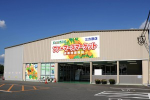 mikatahara