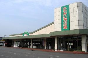 mina_kikugawa